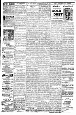 Logansport Pharos-Tribune from Logansport, Indiana on October 25, 1897 · Page 7