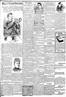 Logansport Pharos-Tribune from Logansport, Indiana on February 9, 1895 · Page 2