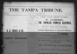 The Weekly Tribune