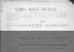 Tampa Daily Journal