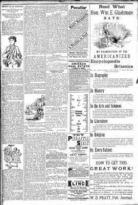 Logansport Pharos-Tribune from Logansport, Indiana on February 26, 1891 · Page 2