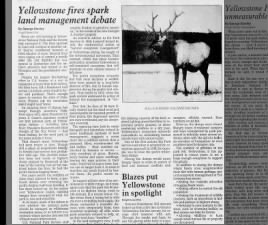 The effect of the 1988 fires on Yellowstone