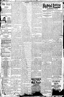 Logansport Pharos-Tribune from Logansport, Indiana on July 4, 1896 · Page 4
