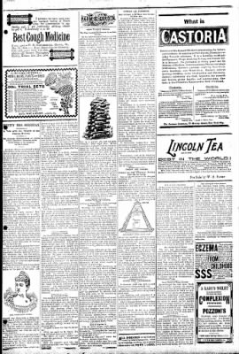 Logansport Pharos-Tribune from Logansport, Indiana on February 14, 1895 · Page 7