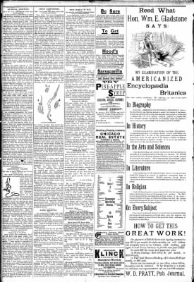 Logansport Pharos-Tribune from Logansport, Indiana on February 28, 1891 · Page 2