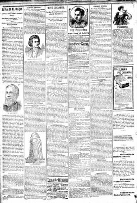 Logansport Pharos-Tribune from Logansport, Indiana on February 19, 1895 · Page 2