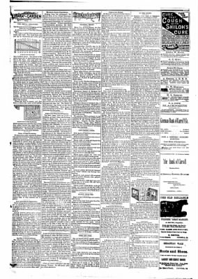 The Carroll Sentinel from Carroll, Iowa on March 23, 1894 · Page 3