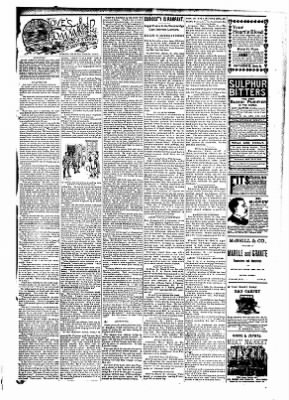 The Carroll Sentinel from Carroll, Iowa on March 23, 1894 · Page 11