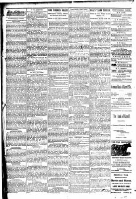The Carroll Sentinel from Carroll, Iowa on April 13, 1894 · Page 3