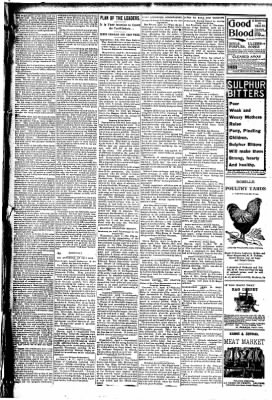 The Carroll Sentinel from Carroll, Iowa on April 13, 1894 · Page 11