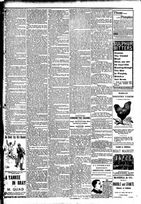 The Carroll Sentinel from Carroll, Iowa on May 18, 1894 · Page 11