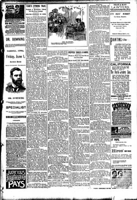 The Carroll Sentinel from Carroll, Iowa on May 25, 1894 · Page 9
