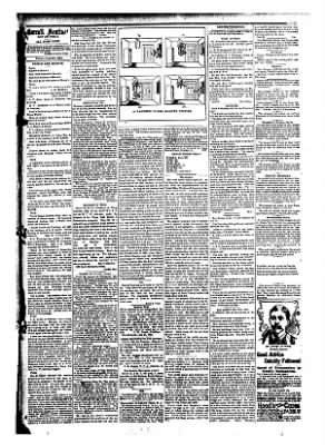 The Carroll Sentinel from Carroll, Iowa on June 29, 1894 · Page 7
