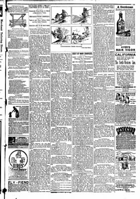 The Carroll Sentinel from Carroll, Iowa on July 13, 1894 · Page 9