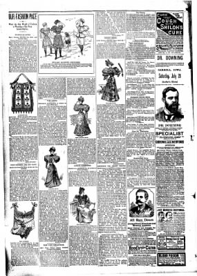 The Carroll Sentinel from Carroll, Iowa on July 20, 1894 · Page 4