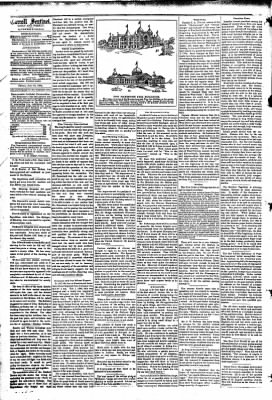 The Carroll Sentinel from Carroll, Iowa on July 27, 1894 · Page 6