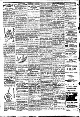 The Carroll Sentinel from Carroll, Iowa on August 17, 1894 · Page 2