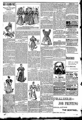 The Carroll Sentinel from Carroll, Iowa on August 24, 1894 · Page 4