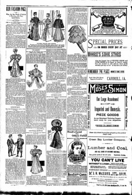 The Carroll Sentinel from Carroll, Iowa on October 12, 1894 · Page 4