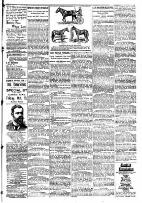 The Carroll Sentinel from Carroll, Iowa on October 12, 1894 · Page 9