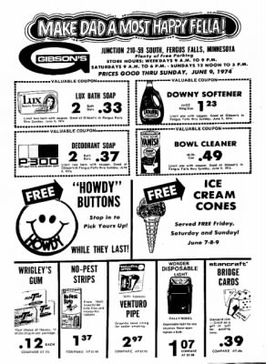 The Daily Journal from Fergus Falls, Minnesota on June 5, 1974 · Page 9