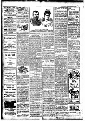 The Carroll Sentinel from Carroll, Iowa on November 16, 1894 · Page 2