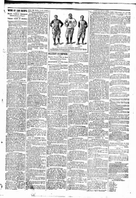 The Carroll Sentinel from Carroll, Iowa on November 16, 1894 · Page 5
