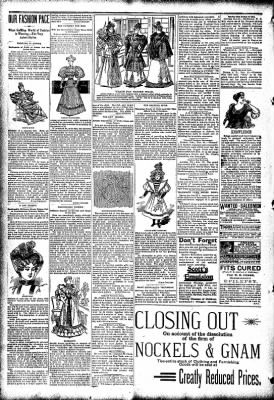 The Carroll Sentinel from Carroll, Iowa on November 23, 1894 · Page 4