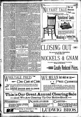 The Carroll Sentinel from Carroll, Iowa on December 7, 1894 · Page 3