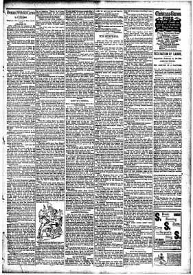 The Carroll Sentinel from Carroll, Iowa on December 14, 1894 · Page 11