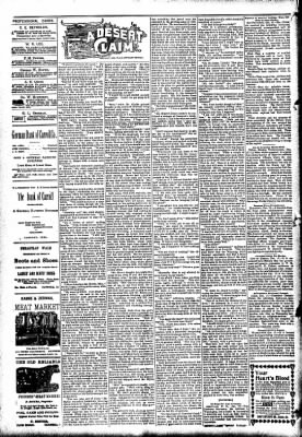 The Carroll Sentinel from Carroll, Iowa on December 21, 1894 · Page 2