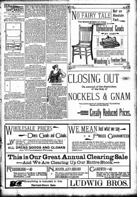 The Carroll Sentinel from Carroll, Iowa on December 28, 1894 · Page 3