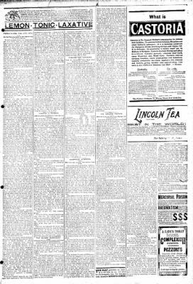 Logansport Pharos-Tribune from Logansport, Indiana on February 24, 1895 · Page 7