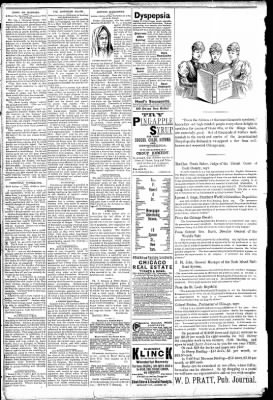 Logansport Pharos-Tribune from Logansport, Indiana on March 11, 1891 · Page 2