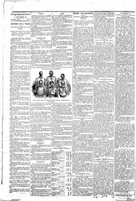 Progress-Review from La Porte City, Iowa on January 12, 1895 · Page 4