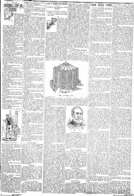 Progress-Review from La Porte City, Iowa on January 19, 1895 · Page 3