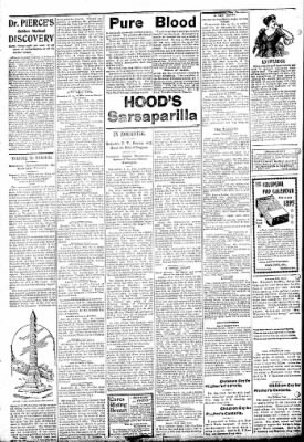 Logansport Pharos-Tribune from Logansport, Indiana on February 27, 1895 · Page 2