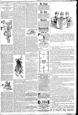 Logansport Pharos-Tribune from Logansport, Indiana on March 12, 1891 · Page 2