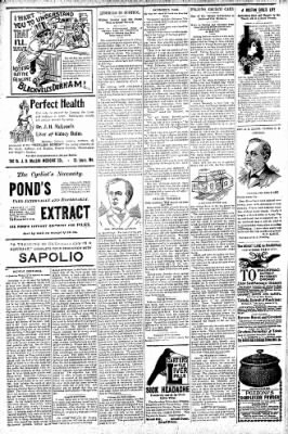 Logansport Pharos-Tribune from Logansport, Indiana on July 10, 1896 · Page 6