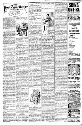 Logansport Pharos-Tribune from Logansport, Indiana on November 13, 1897 · Page 22