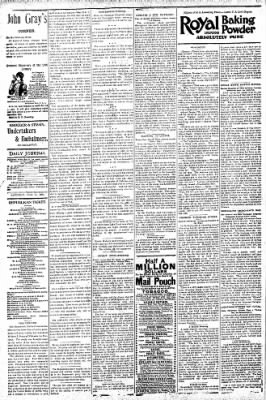 Logansport Pharos-Tribune from Logansport, Indiana on July 11, 1896 · Page 4