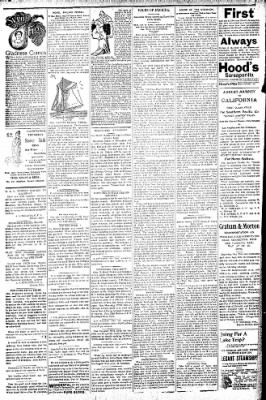 Logansport Pharos-Tribune from Logansport, Indiana on July 12, 1896 · Page 2
