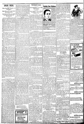 Logansport Pharos-Tribune from Logansport, Indiana on March 5, 1895 · Page 2