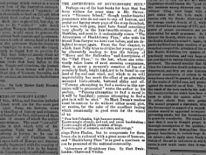 1885 review of Mark Twain's book
