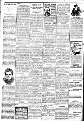 Logansport Pharos-Tribune from Logansport, Indiana on March 7, 1895 · Page 2