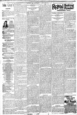 Logansport Pharos-Tribune from Logansport, Indiana on July 14, 1896 · Page 4