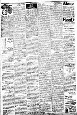Logansport Pharos-Tribune from Logansport, Indiana on July 15, 1896 · Page 2