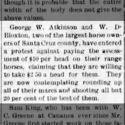 AZ Silver Belt (Globe) - Aug 21, 1902 - Pg 3 - WD BLOXTON - biggest horse owner in Santa Cruz Co. -