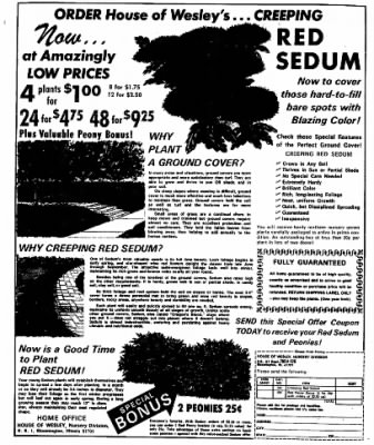 Sunday Gazette-Mail from Charleston, West Virginia on July 9, 1972 · Page 116