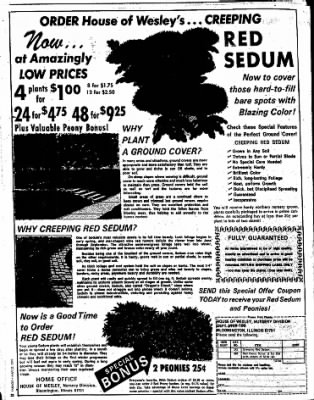 Sunday Gazette-Mail from Charleston, West Virginia on May 23, 1976 · Page 155